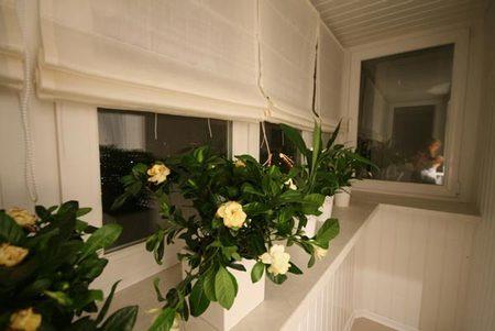 6 балкон украшен цветами.